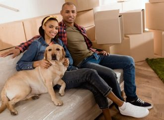 10 Essential Moving Tips Every Pet Owner Should Know