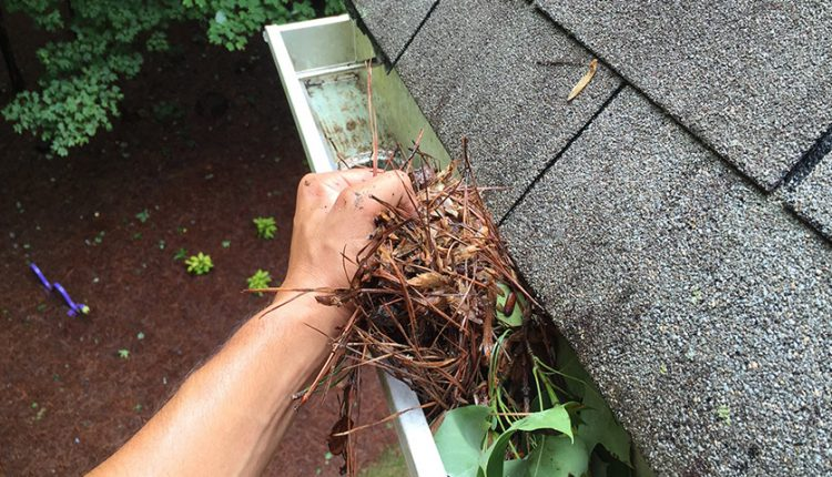 Why Gutter Cleaning Should