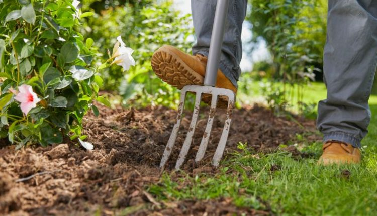 Essential Lawn Garden Tools for Your Yard